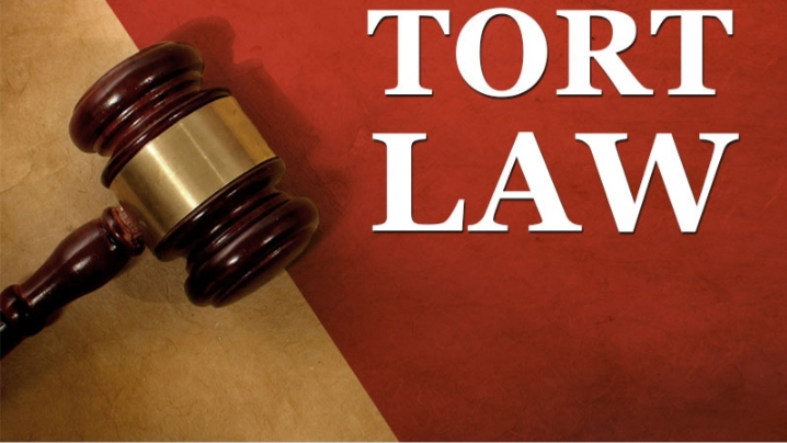 What is tort law ?